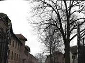 Auschwitz fotos para olvidar