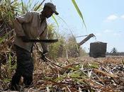 Liberalizar economía Cuba: comienza bombardeo mediático