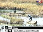 Entrevista Enrique Richard sobre esponjas Titicaca lo...