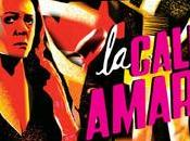 CALLE AMARGURA Arturo Ripstein podrá verse este Casa América