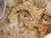 restauración mosaico Medusa Itálica