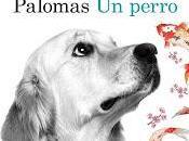 perro Alejandro Palomas