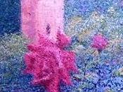 ultima rosa--Alhambra