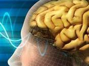 Mitos verdades sobre píldora inteligencia