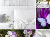 Collage: ¡Primavera, llega
