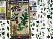 DISPONIBLE: Árboles. Introducción especies ibéricas
