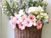 Cestas para plantas flores