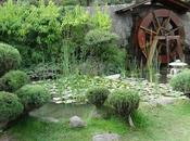 Jardín Japonés Parque Metropolitano