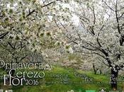 PROGRAMACIÓN COMPLETA. Primavera Cerezo Flor 2016
