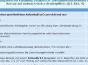 declaración renta Austria: International