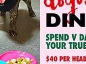 puedes salir comer restaurante perro!
