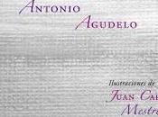 Antonio Agudelo. cielo ajedrez