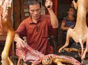 horripilante Festival carne perro Yulin