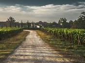 Tierra Estella: Turismo rural