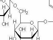 Elige bien comensal... glucósidos cianogénicos