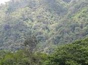 cara ecoturística Panamá