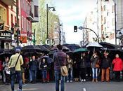 Crisálida doscientos paraguas. Noticias importantes Logroño.