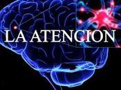 Atencion comenzaremos definir trabajar atencio...
