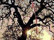corazón barriletequedó atrapado entre ramasy mi...