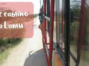 camino Lamu