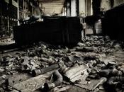 pata elefante Chernobyl