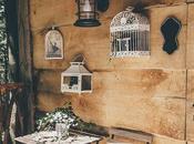 Cabaña Rustica Madera Arboles