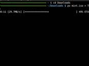 Como saber progreso comandos terminal Linux