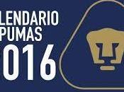 Fecha partidos Pumas Apertura 2016