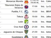 Calendario Apertura 2016 fechas horarios oficiales Ligamx