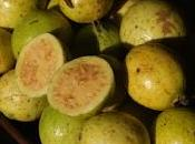 Guayaba, fruto americano común dieta diaria