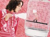 Limpieza jaula pájaros: cómo hacerlo forma correcta