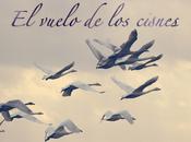Música francés: vuelo cisnes.