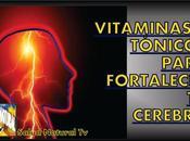 Vitaminas tónicos para fortalecer cerebro
