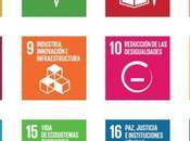 Desarrollo sostenible: ¿real