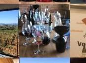 Josep Grau, viticultor Montsant
