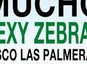 Planeta Demos 2016: Sexy Zebras, Mucho, Disco Palmeras!....