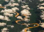 Reserva Vida Silvestre Amazónica Manuripi