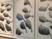 lugar para vivir, piedras Uruguay, testeos livianos