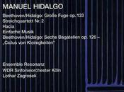 Hidalgo hacia Beethoven