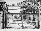 Nunca olvides... Auschwitz