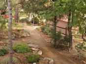 Remodelación camino seto norte jardín asiento piedra para descansar