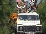 Safari para cazar humanos última creación rémi gaillard