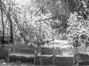 Adiós jardín Waldorf… ahora primaria ¿qué?