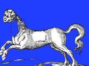 caballo chico decía