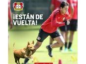 Chicharito listo para jugar mañana Leverkusen