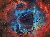 nebulosa Rosetta DownUnder Observatory