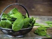 Clorofila, Porqué Incluir Hojas Verdes Nuestra Dieta?
