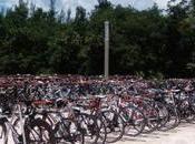 ¿Viajar bici mandarla empresa transporte? México