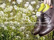 Musgo Zapatos Ecológicos. Nueva colección Otoño Invierno 2016