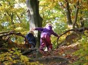 Como sacar partido excursiones otoño niños